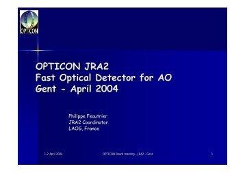 JRA2: Fast Optical Detectors for AO - Opticon