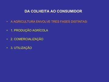 DA COLHEITA AO CONSUMIDOR