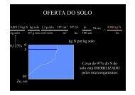 OFERTA DO SOLO