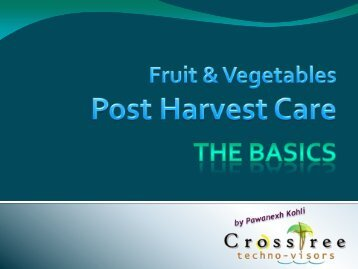 Cold Chain for F&V - CrossTree