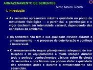 ARMAZENAMENTO DE SEMENTES Silvio Moure Cicero 1. Introdução