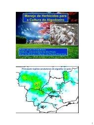 Apresentação do PowerPoint - Departamento de Produção Vegetal