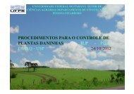 procedimentos para o controle de plantas daninhas - Departamento ...