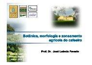 Botânica morfologia e zoneamento agrícola do cafeeiro