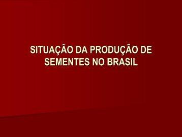 SITUAÇÃO DA PRODUÇÃO DE SEMENTES NO BRASIL