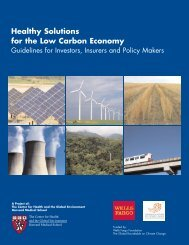 Healthy Solutions for the Low Carbon Economy