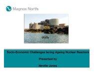 Nuclear power plant lifetime challenges - Social Economical