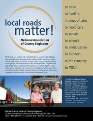 Needs Assessment Brochure (pdf) - National Association of County ...
