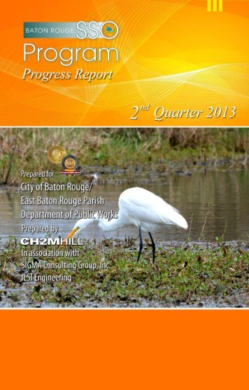 Progress Reports - Baton Rouge Department of Public Works ...