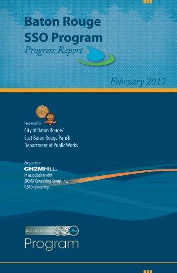 Baton Rouge SSO Program