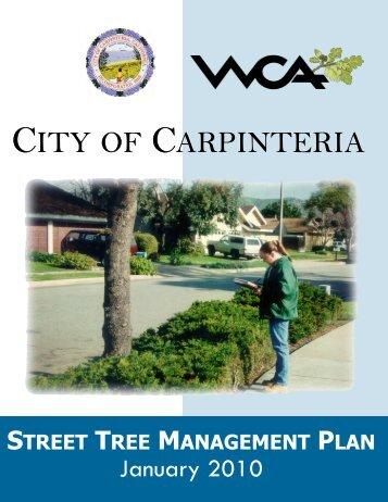 CITY CARPINTERIA