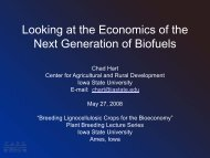Looking at the Economics of the Next Generation of Biofuels