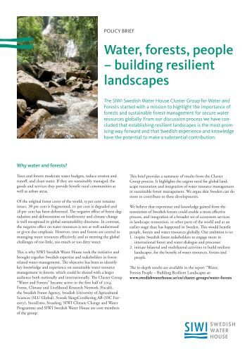 2015 Water, Forest, People Policy Brief.pdf