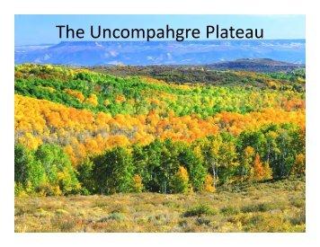 The Uncompahgre Plateau