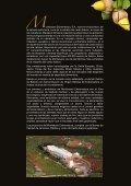 Catálogo de productos - Page 2