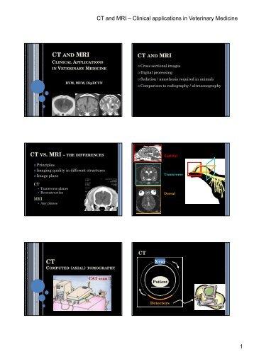 CT MRI CT 1