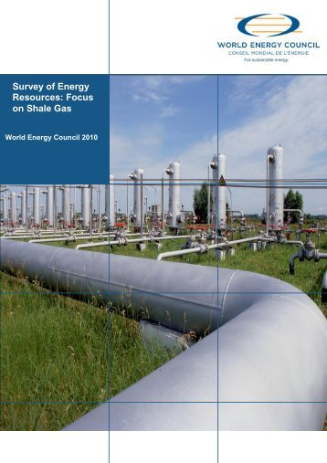 Survey of Energy Resources Focus on Shale Gas