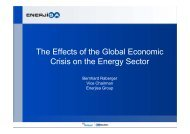 The Effects of the Global Economic Crisis on the Energy Sector