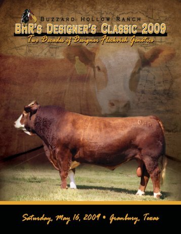 Two Decades of Fleckvieh Genetics - Buzzard Hollow Ranch