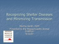 Recognizing Shelter Diseases and Minimizing Transmission