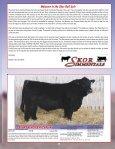 the Skor Bull Sale - Transcon Livestock Corporation - Page 3