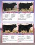 the Skor Bull Sale - Transcon Livestock Corporation - Page 4