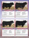 the Skor Bull Sale - Transcon Livestock Corporation - Page 5