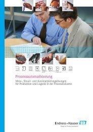 Download der (PDF 1,1 MB) - Endress+Hauser