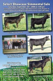 Select Showcase Simmental Sale - Dwyer Cattle Services