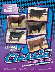 Owner: Stavick Simmentals - North Dakota Simmental Association