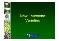 New Leucaena Varieties