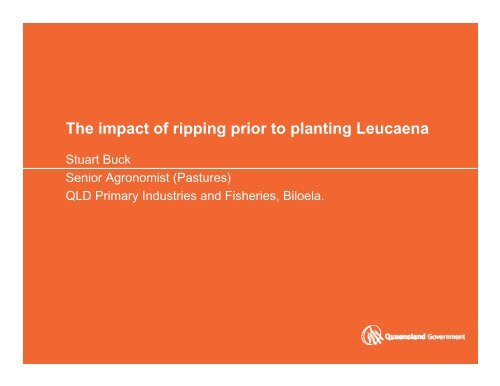 The impact of ripping prior to planting Leucaena
