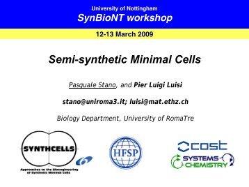 Semi-synthetic Minimal Cells