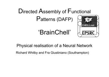 Directed Assembly Functional Patterns 'BrainChell'