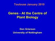Genes - At the Centre of Plant Biology