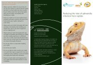 Reducing the risks of salmonella infection from reptiles