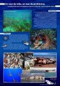 Atún rojo el atleta del mar - Page 4