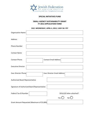 FY 2013 APPLICATION FORM