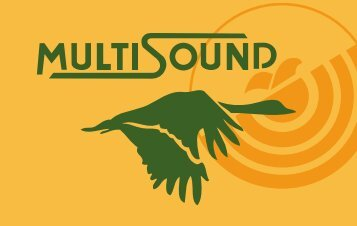 Untitled - Multisound