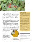 Agriculture - Page 3