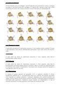 ISTRUZIONI PER L'ASSEMBLEGGIO – ver 1.0 RINVII ANGOLARI - Page 6