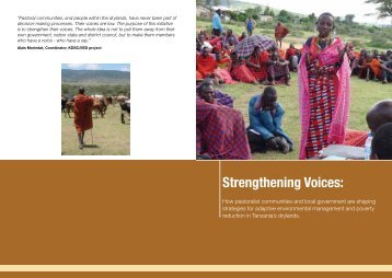 Strengthening Voices