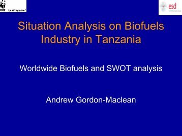 Situation Analysis on Biofuels Industry in Tanzania