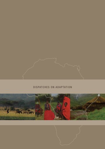 DISPATCHES ON ADAPTATION