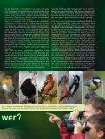 Meister (r)Ade(l)bar – mit dem Storch unterwegs im Altmühltal - LBV - Seite 7