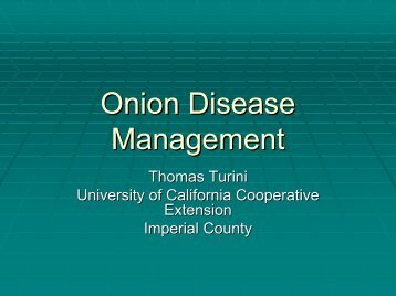Onion Disease Management