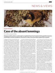 Case of the absent lemmings