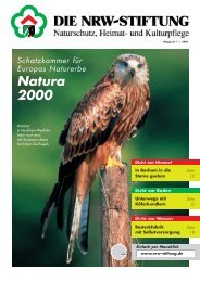 PDF (3,2 MB) - NRW-Stiftung