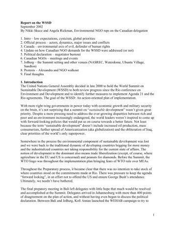 WSSD Report final.pdf - One Sky