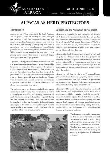 ALPACAS AS HERD PROTECTORS